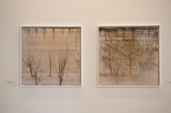 Land Series. Caroline Tabet. Art Factum.